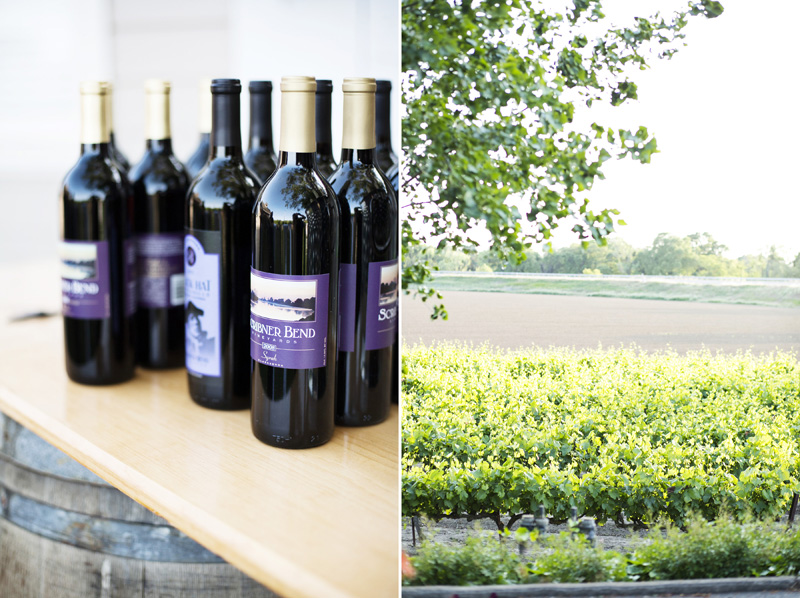Scribner Bend Vineyards Wedding_14