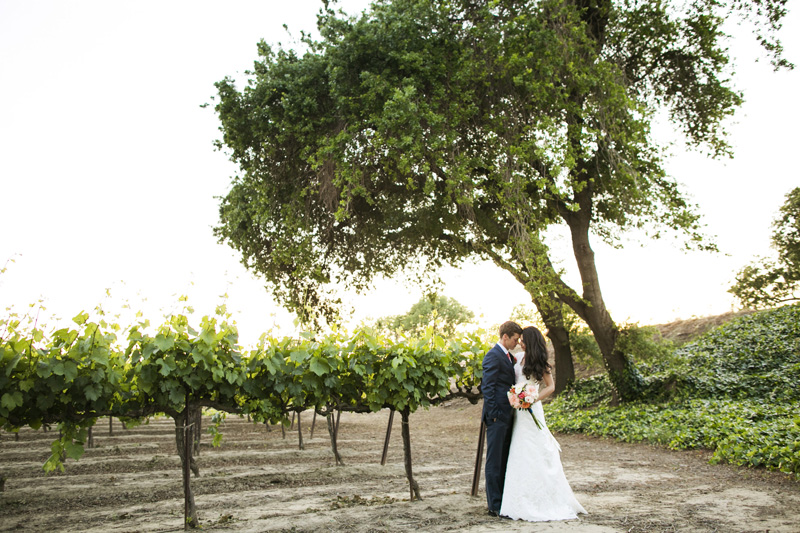 Scribner Bend Vineyards Wedding_20