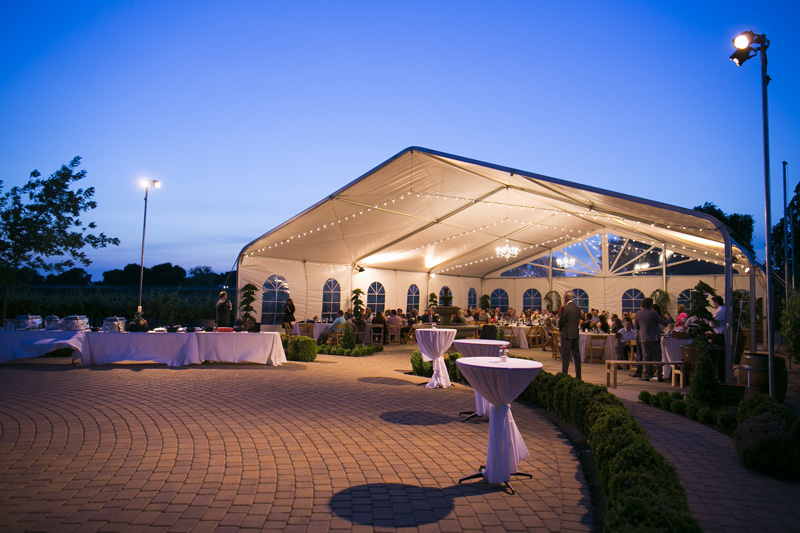 Scribner Bend Vineyards Wedding_26